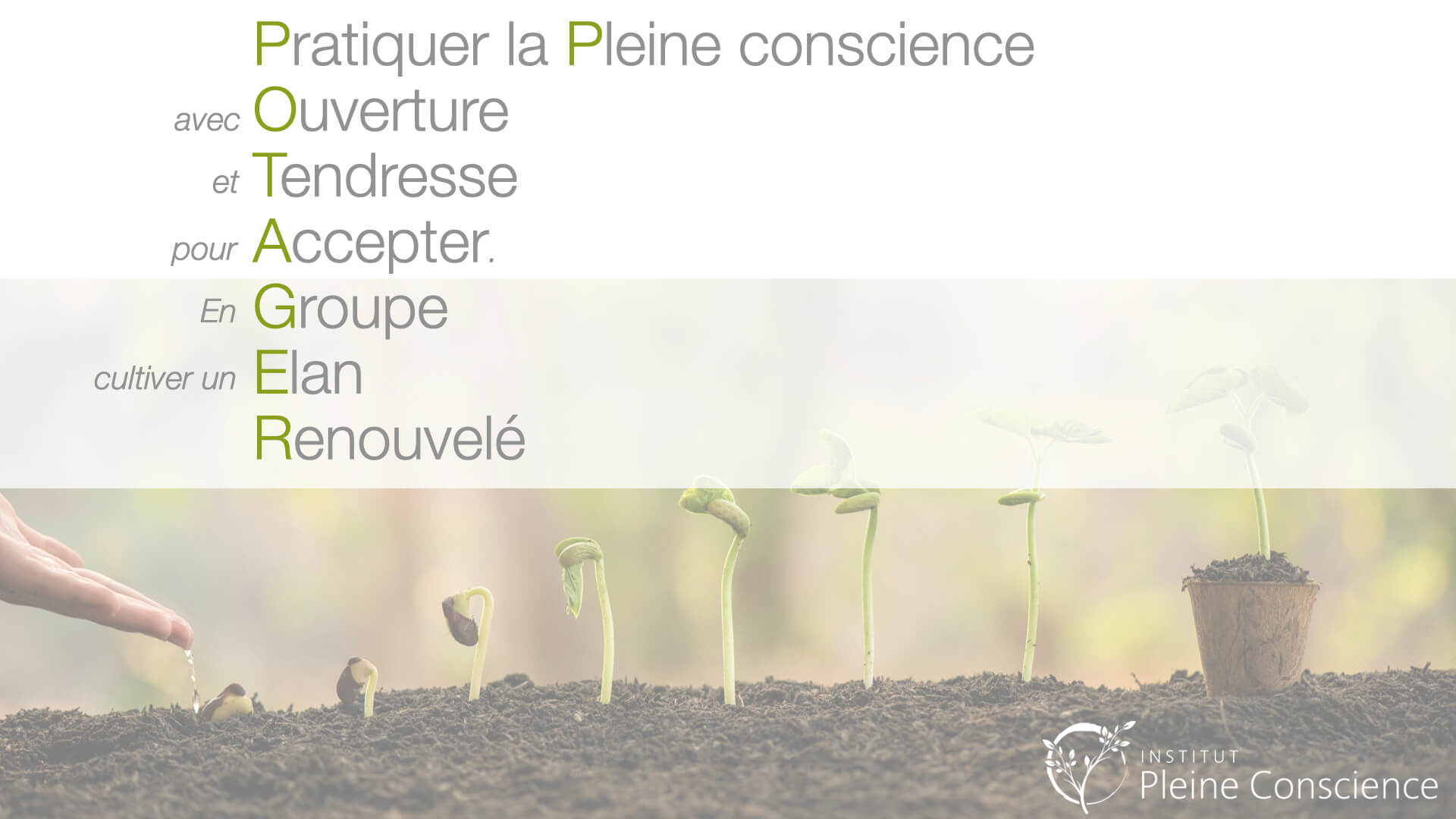 Ipc potager printemps 2021
